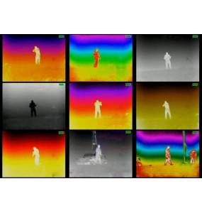 Monuculaire imageur thermique Promotheus ARMASIGHT Allwan